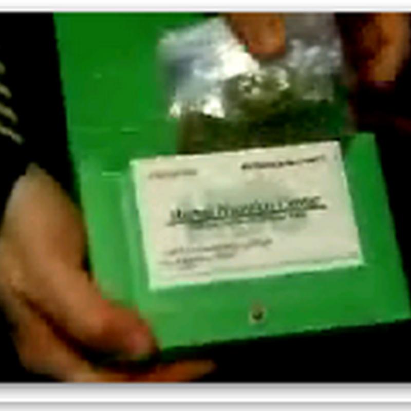 Group backs medical marijuana